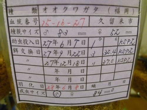 70s虫蔵15-16 840