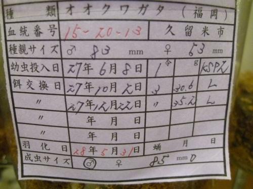 70s虫蔵15-20 850