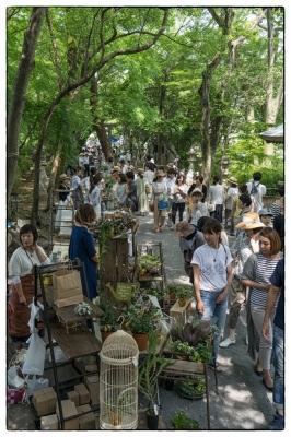 20160522-Kochi-village-fair-3.jpg