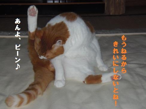 夜のお約束!!!1