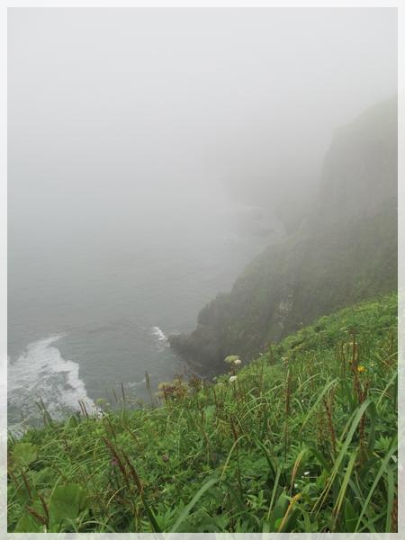 霧多布岬 2016年8月-1