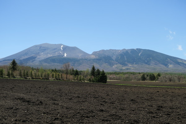 黒土の畑と浅間山