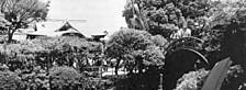 亀戸天神社全景