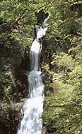 日光寂光の滝