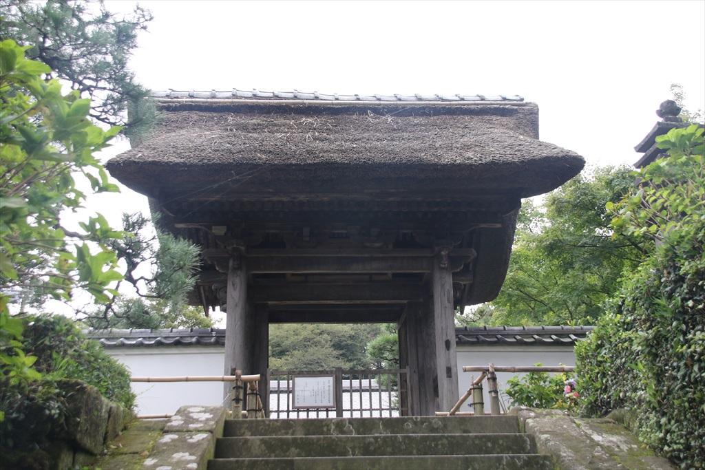 長寿寺を覗く_1