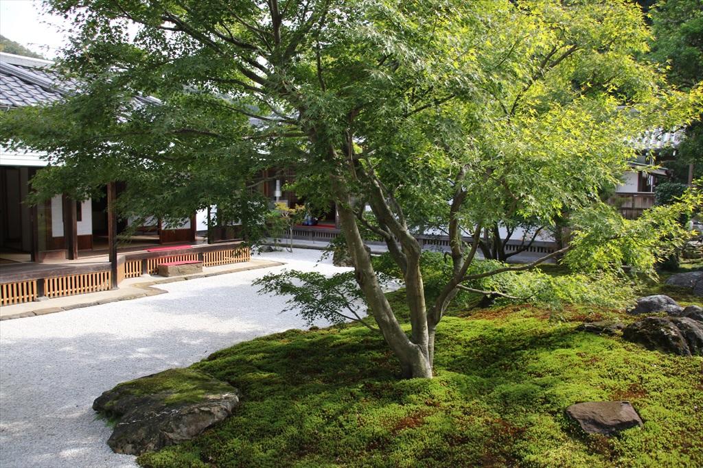 書院の庭_2
