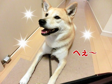 s-tokimeki160702-CIMG4562