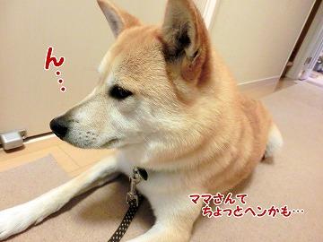 s-1tokimeki160704-CIMG4564