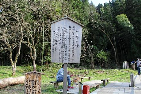 s-chiekoIMG_0958.jpg