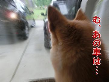 s-tokimeki160702-CIMG4532.jpg