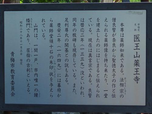 20160505_yakouji_02.jpg