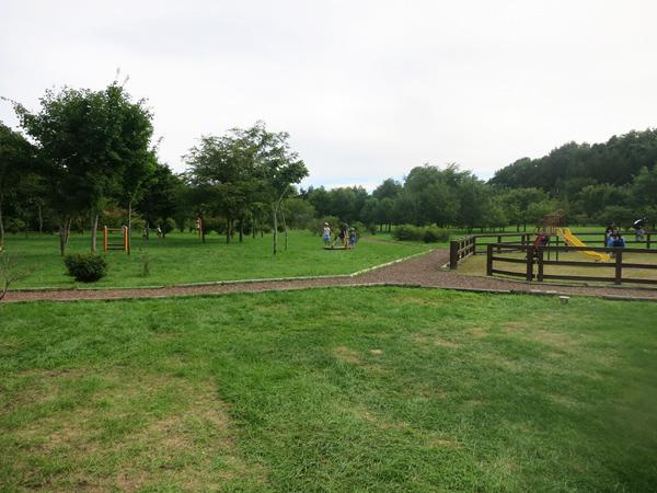 鹿公園 アスレチックの森 健康遊具