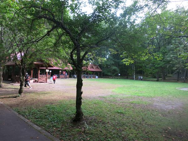 鹿公園 第1キャンプ場