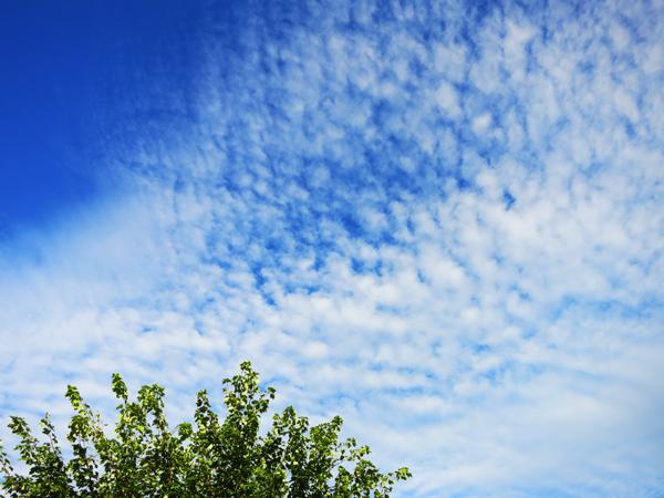 鹿公園キャンプ場 青空 秋の雲