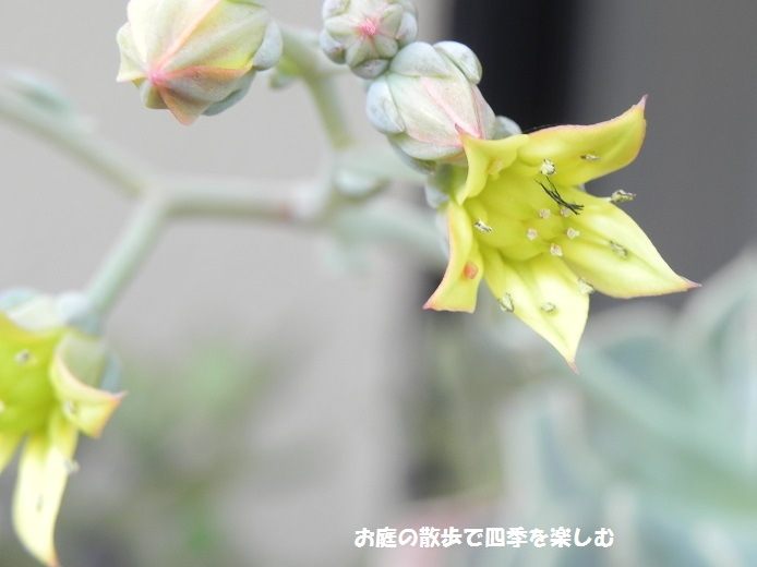 taniku139_201605231729333c3.jpg