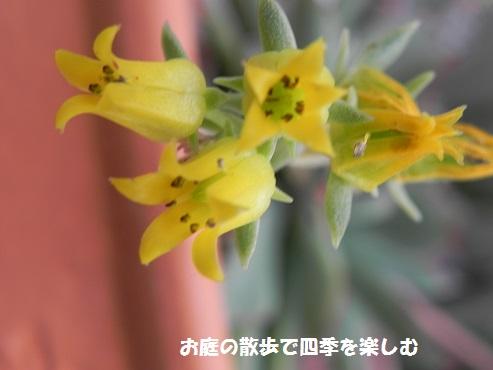 taniku142_2016052317293448f.jpg