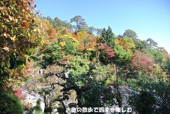 yamadera12.jpg