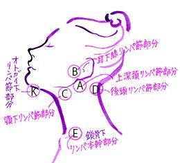 face6.jpg