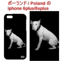 BULLTERRIER PHONE CASE iphone 6 plus1
