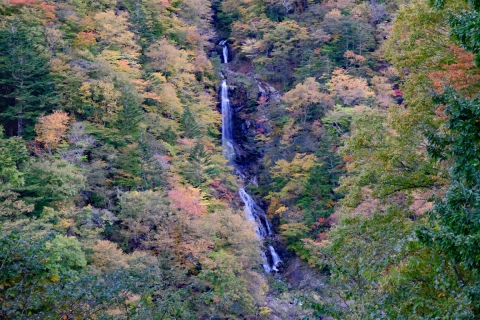 52蛇王の滝