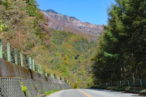 04八ヶ岳高原ライン