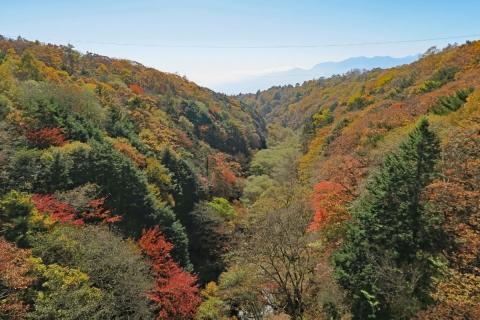 13八ヶ岳高原ライン東沢橋