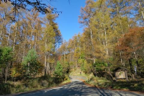 33クリスタルラインみずがき自然園への道