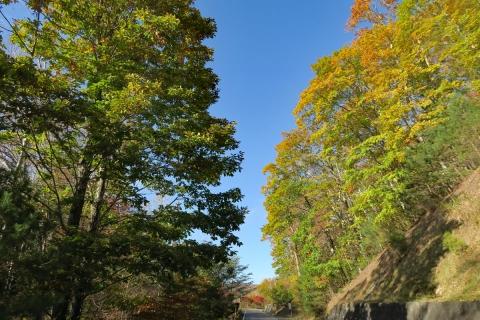 35クリスタルラインみずがき自然園への道