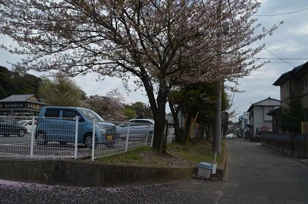 20160411旧布川小学校跡04