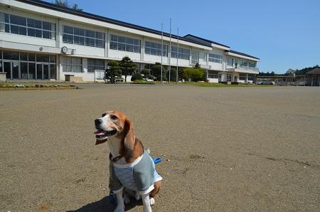 20160415宍倉小学校05
