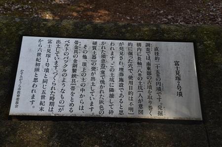 20160415富士見塚古墳公園12