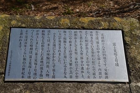20160415富士見塚古墳公園10