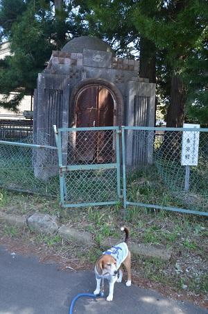 20160415旧・下大津小学校跡13