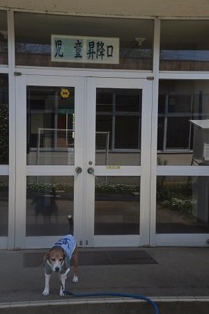 20160415牛渡小学校25