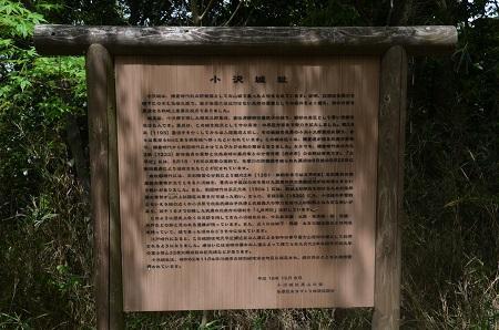 20160423小沢城址19
