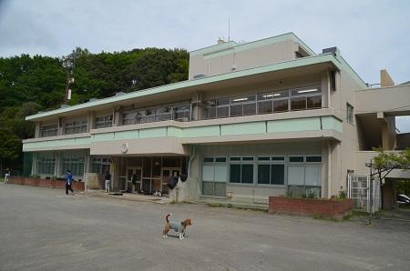 20160423稲城第八小学校08
