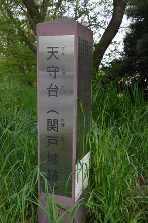 20160423関戸城址05