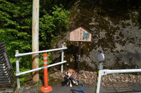 20160430茅倉の滝02