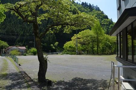 20160430南檜原小学校14