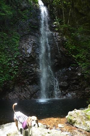 20160430払沢の滝12