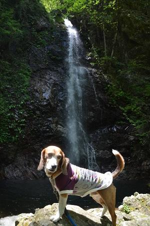 20160430払沢の滝10