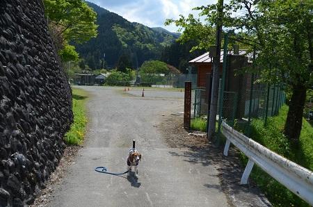 20160430北秋川小学校01
