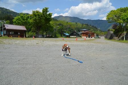 20160430北秋川小学校16
