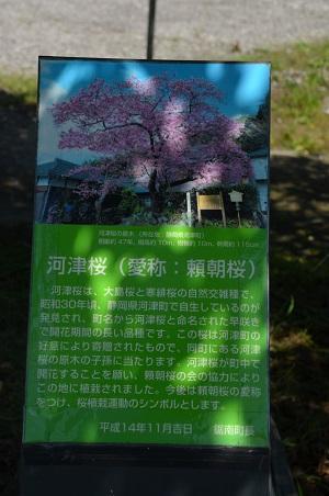 20160518保田中学校10
