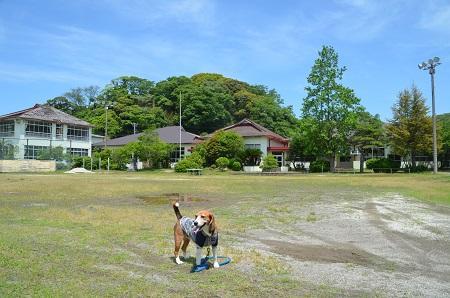 20160518佐久間小学校20