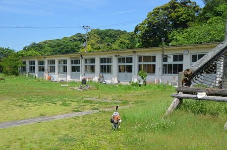 20160518佐久間小学校31