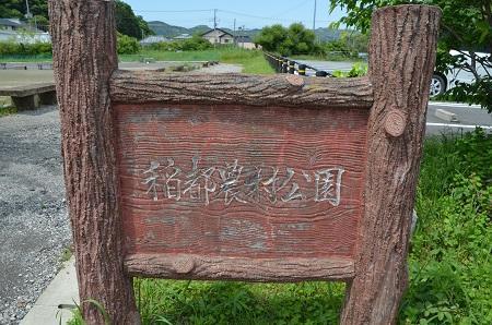 20160518稻都小学校01