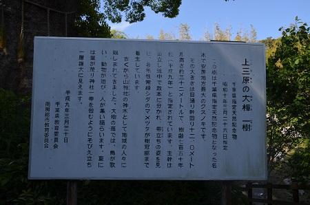 20160518滝田小学校11