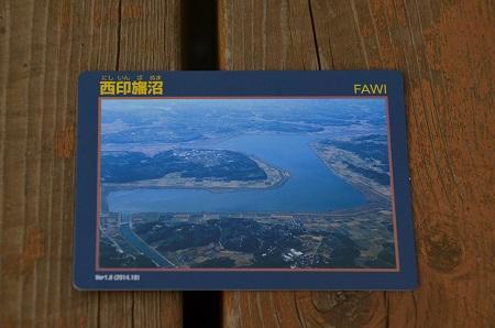 20160606西印旛沼04
