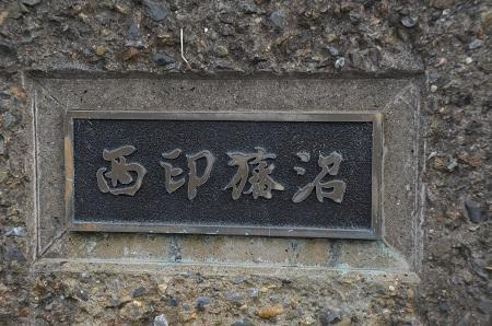 20160606西印旛沼17